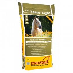 MARSTALL FASER LIGHT