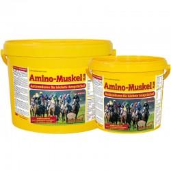 MARST AMINO MUSKEL PLUS 3.5KG